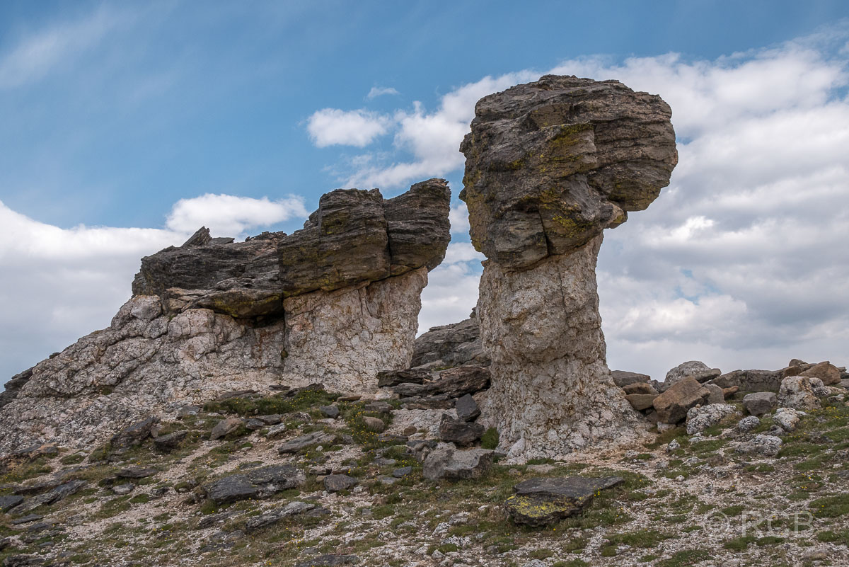 Hoodoos am Tundra Communities Trail, Rocky Mountain NP