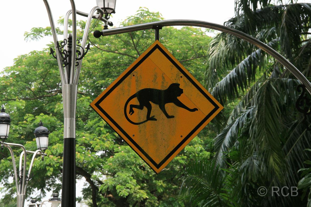 vor Affen warnendes Schild im Lake Garden