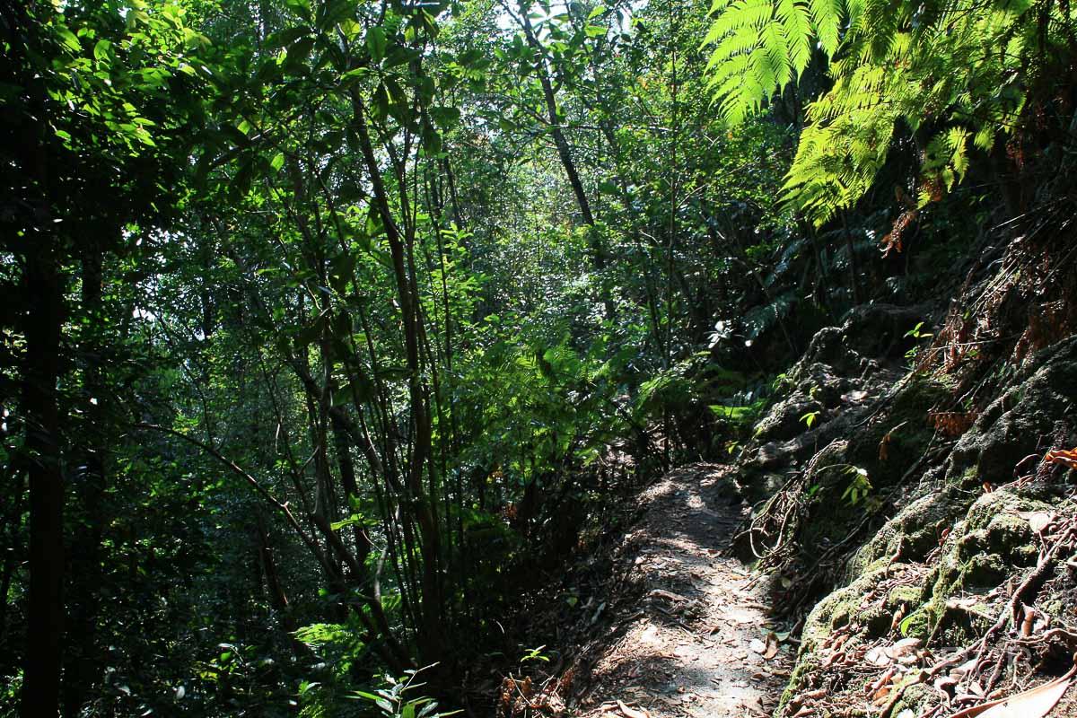 Bukit Tabor Hike auf der Klang Gate Ridge