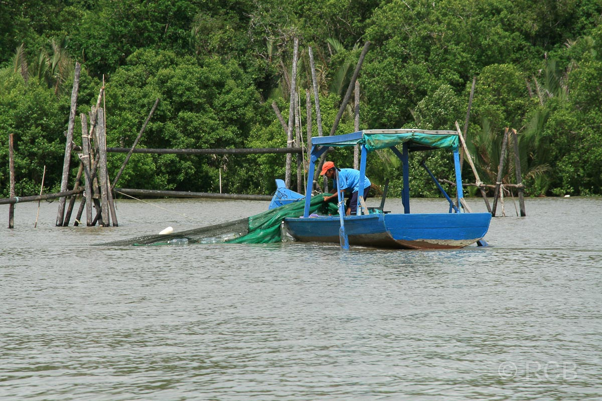 Fischer während der Bootsfahrt zum Bako Nationalpark