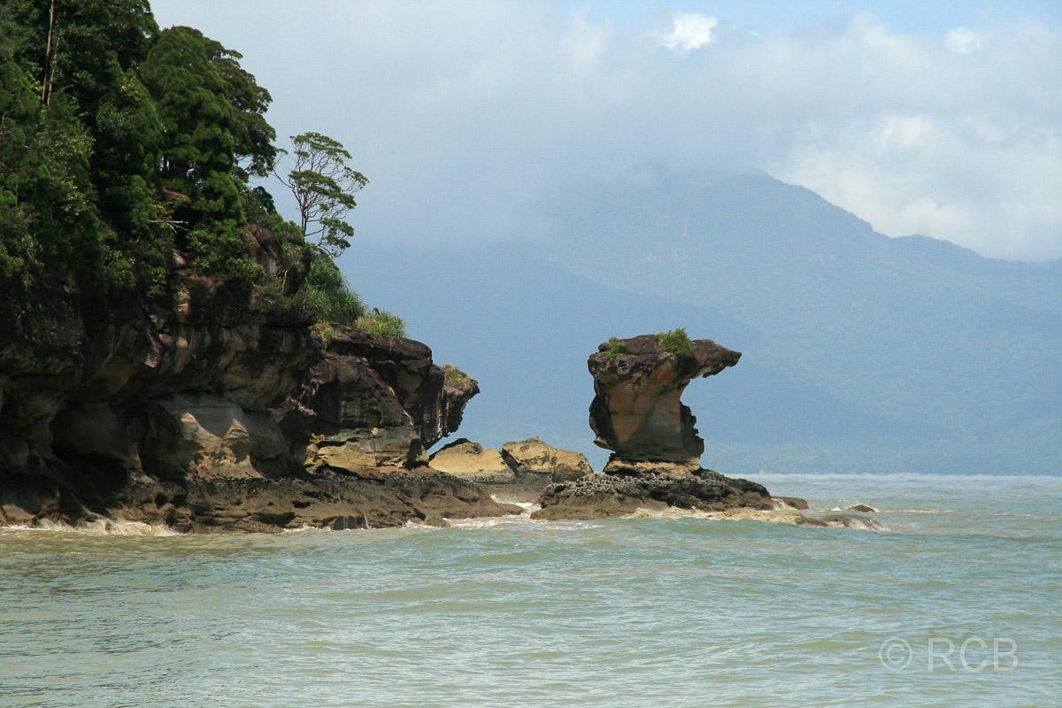 Teluk Pandan Kecil, Bako Nationalpark