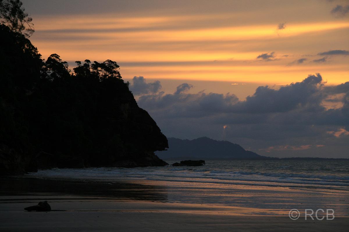 Abendstimmung am Teluk Assam, Bako Nationalpark