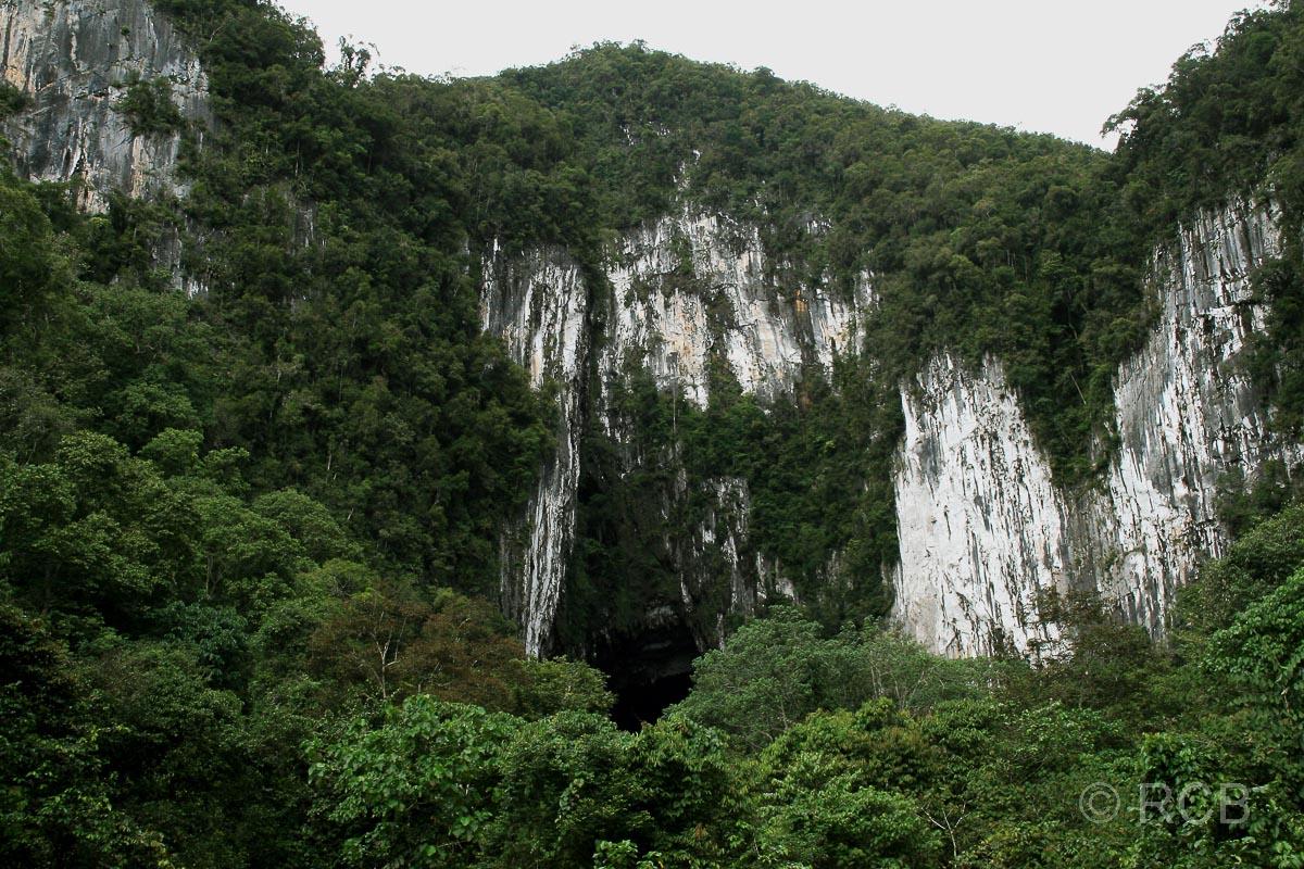 Eingang zu den Höhlen Lang's Cave und Deer Cave, Mulu Nationalpark