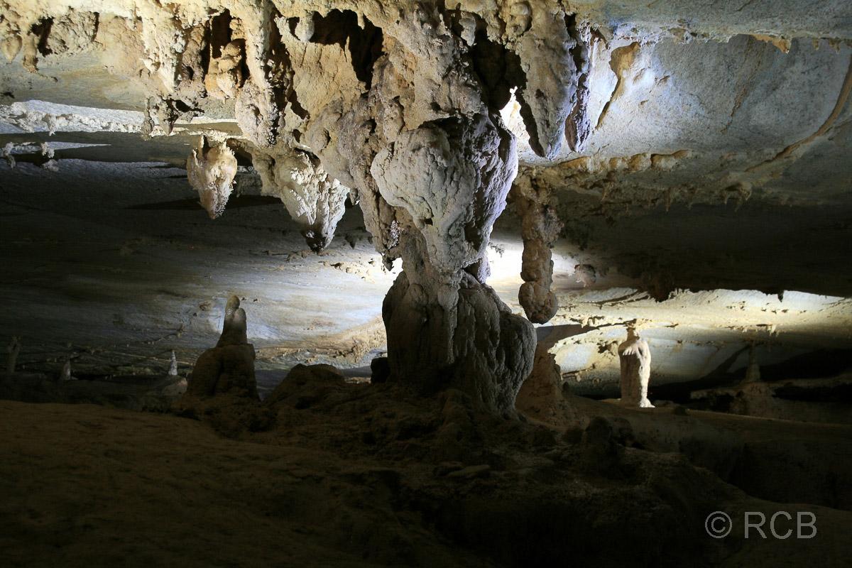 Tropfsteinsäule in Lang's Cave, Mulu Nationalpark