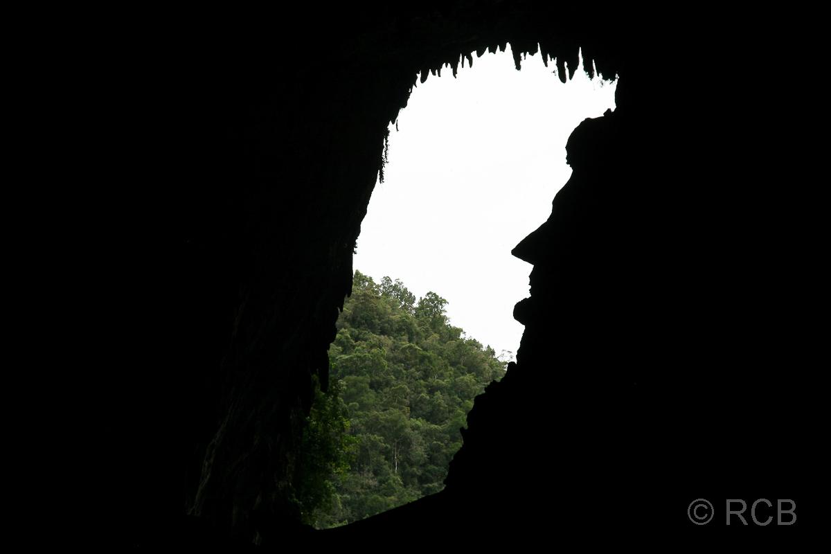 Blick aus der Deer Cave heraus mit dem Profil von Abraham Lincoln, Mulu Nationalpark