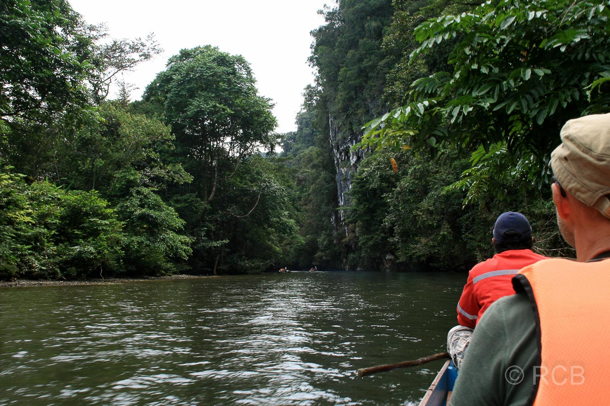 Bootsfahrt auf dem Sungai Melinau, Mulu Nationalpark