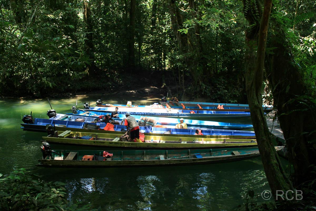 Boote an der Bootsanlegestelle zur Wind und Clearwater Cave, Mulu Nationalpark