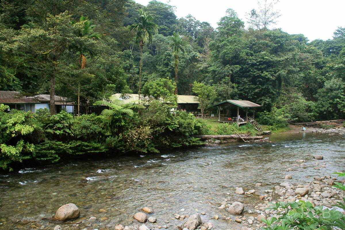 Camp 5, Mulu Nationalpark