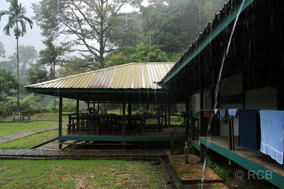 ein Tropenguss geht über Camp 5 nieder, Mulu Nationalpark