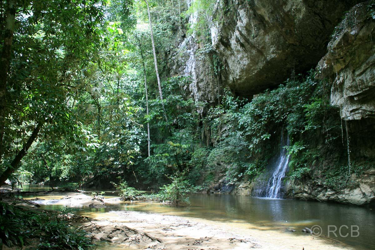 Paku-Wasserfall, Mulu Nationalpark