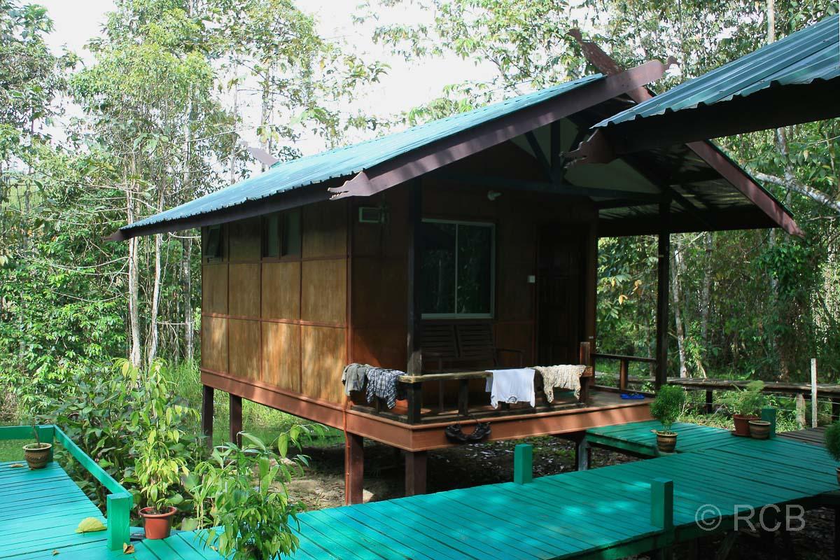 "Unterkunftshütte in der ""Nature Lodge Kinabatangan"""