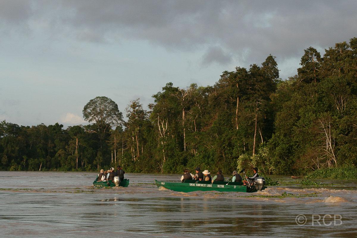 Boote auf dem Kinabatangan River