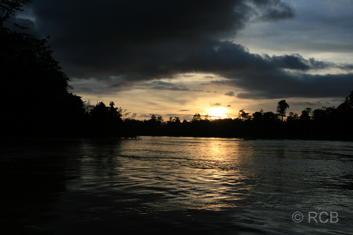 Sonnenuntergang auf dem Kinabatangan River