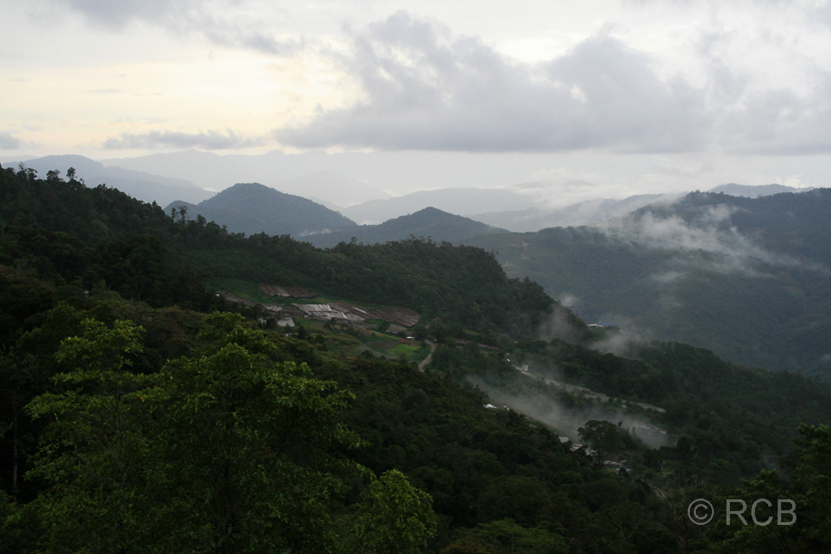 wolkenverhangene Berglandschaft im Kinabalu National Park