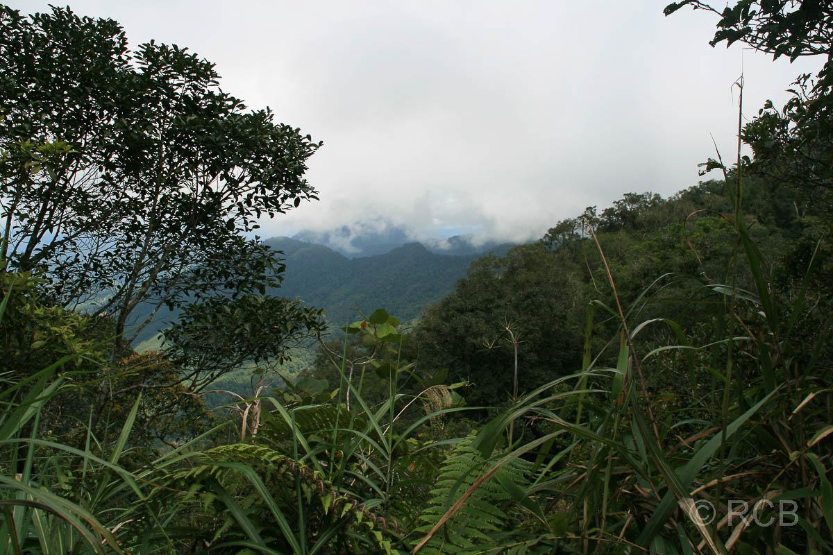 Aussicht vom Kiau View Trail, Kinabalu National Park