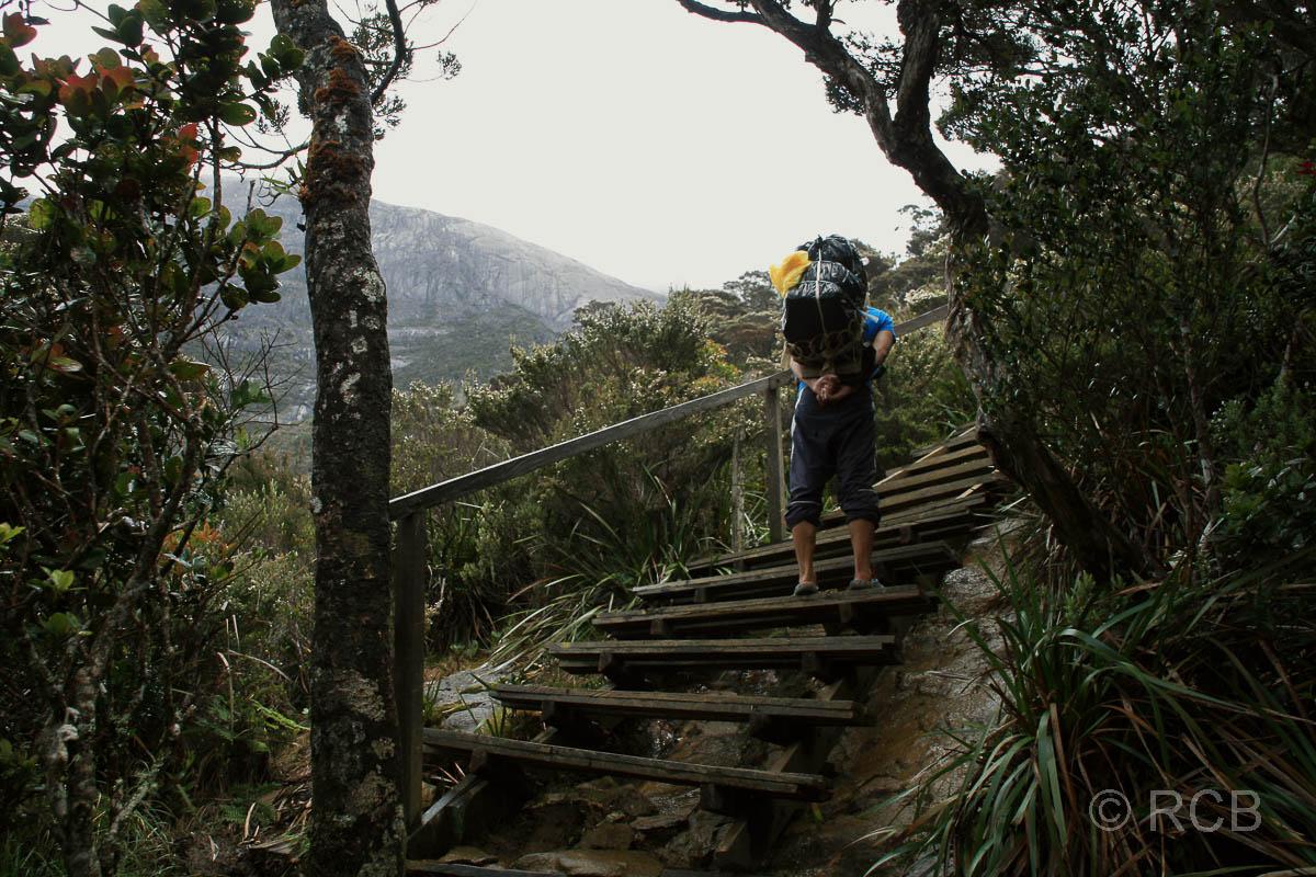 Träger beim Aufstieg zum Mt. Kinabalu
