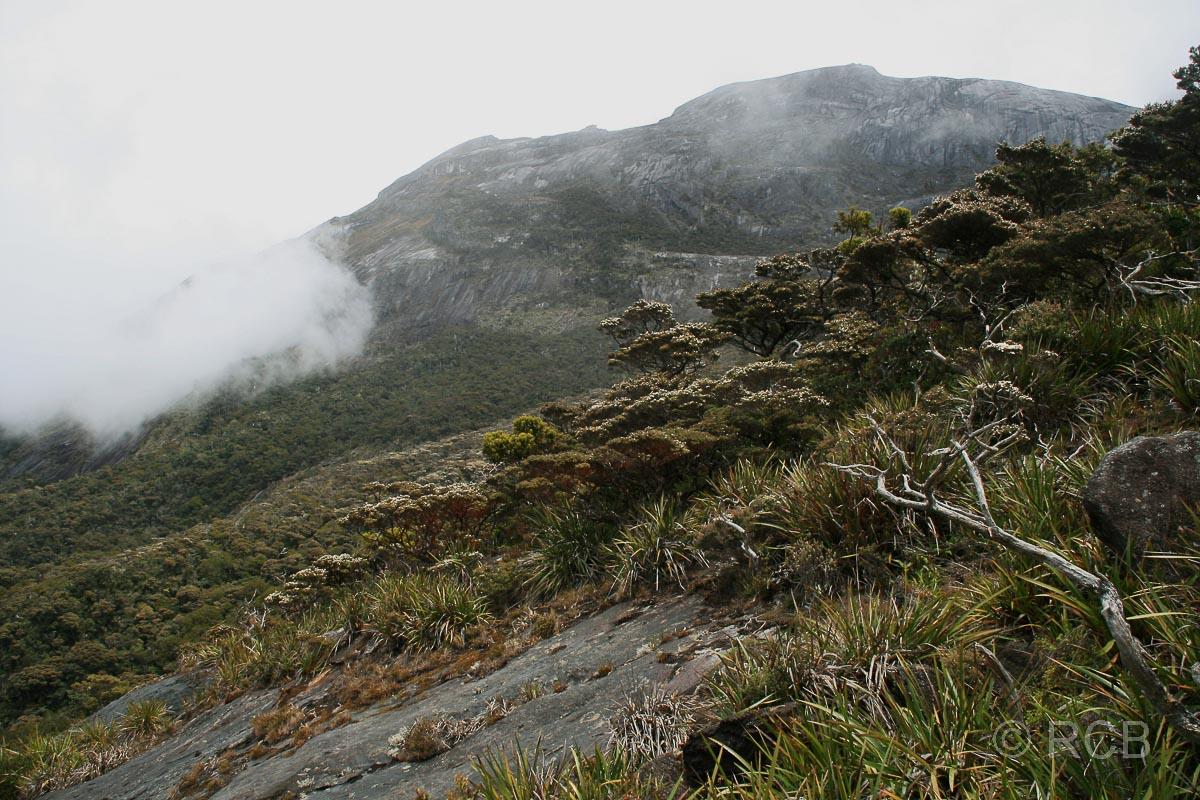 Blick zum Mt. Kinabalu