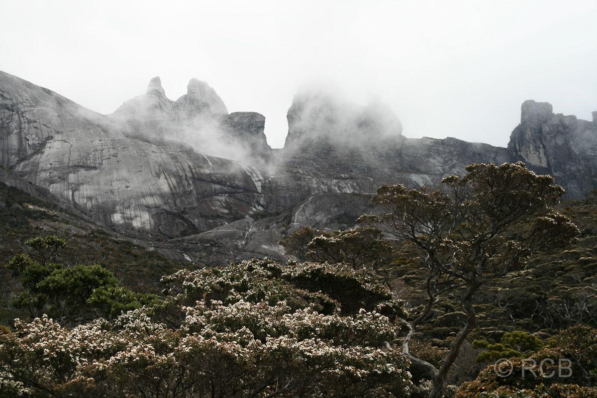 Blick zum Mt. Kinabalu mit den sog. Donkey's Ears