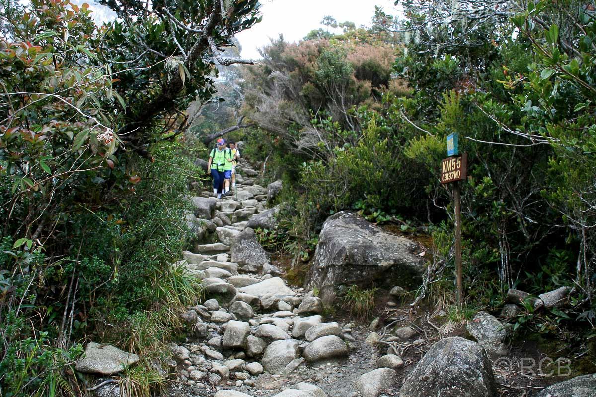 Menschen kommen einem entgegen beim Aufsteig zum Mt. Kinabalu