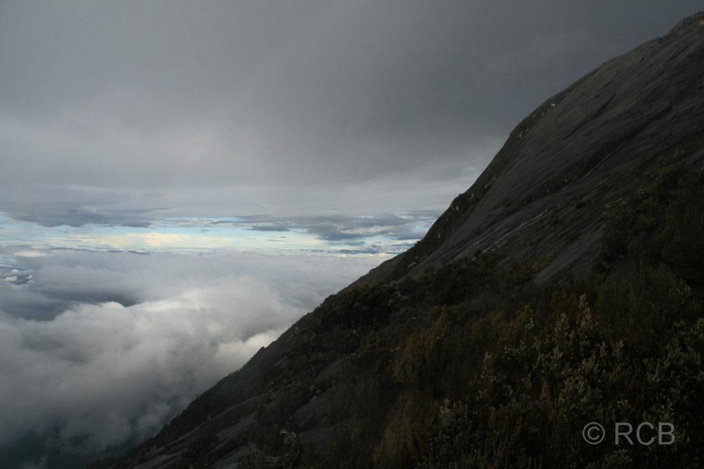 an den Hängen des Mt. Kinabalu