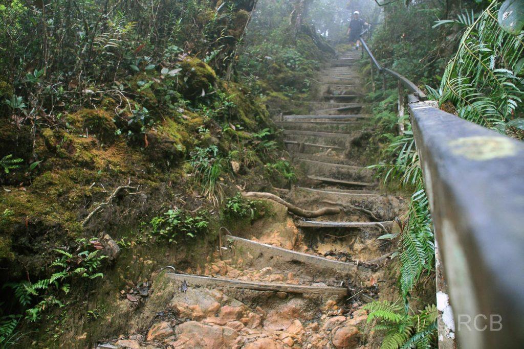 Treppenstufen beim Abstieg vom Mt. Kinabalu