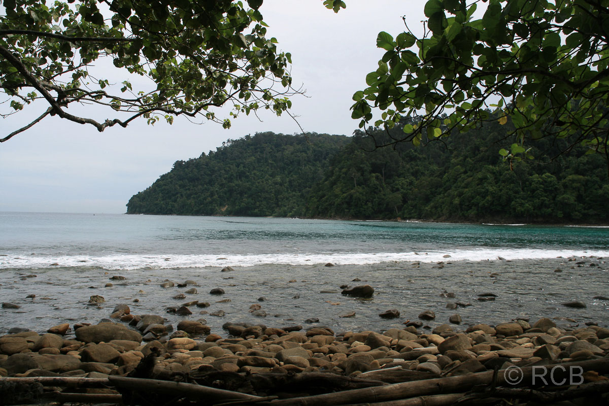 Küste auf Pulau Sapi