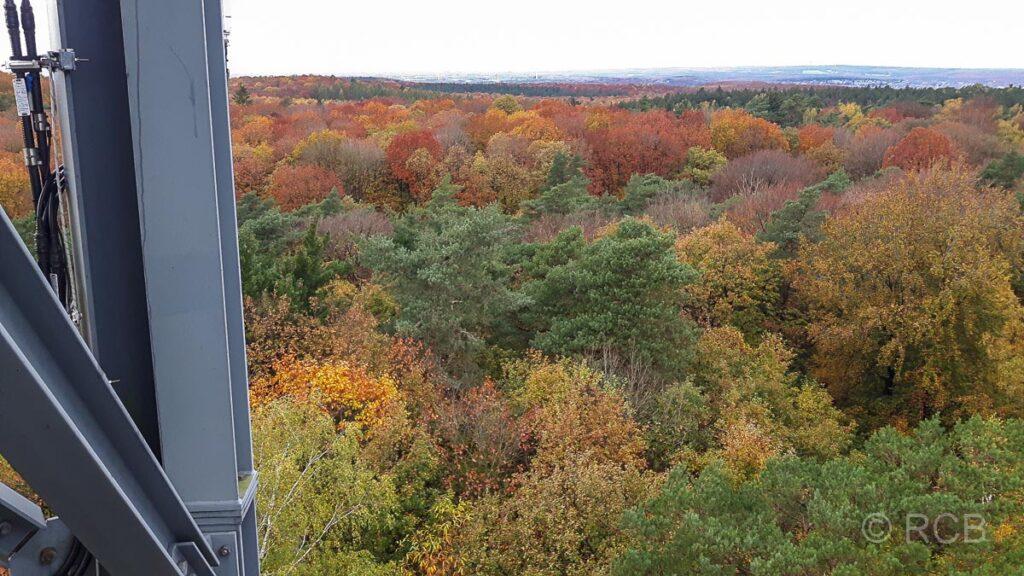 Ausblick vom Feuerwachturm auf dem Rennberg