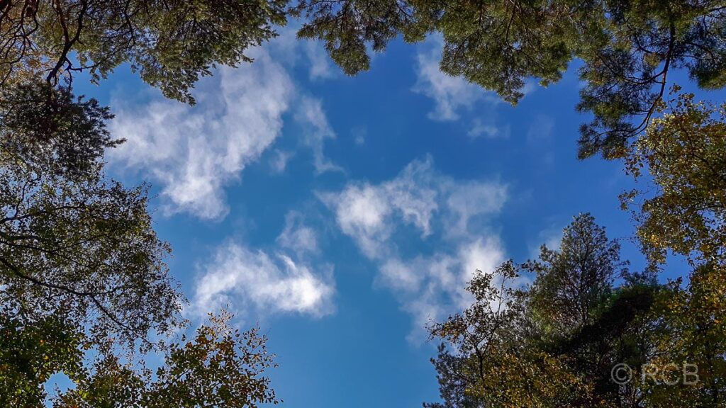 Wolken über der Haard