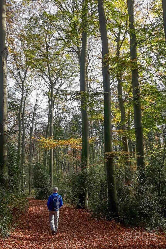 Wanderer im Rumbachtal