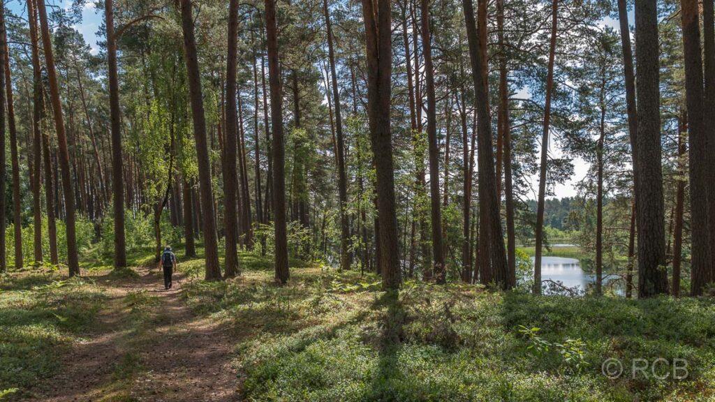 Wanderweg im Aukštaitija NP