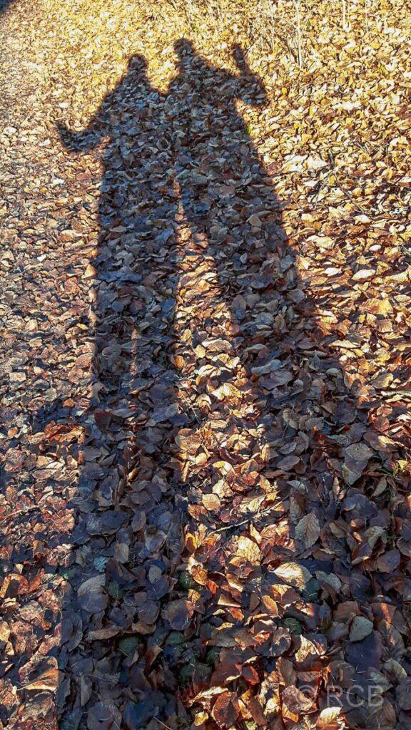 2 Schatten