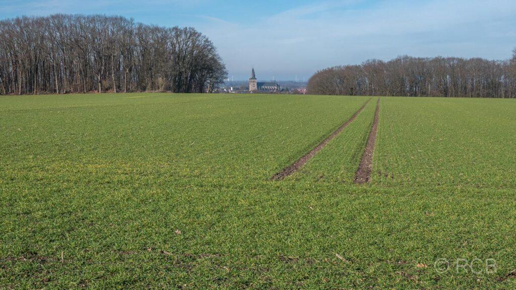 Blick vom Fürstenberg zum Xantener Dom
