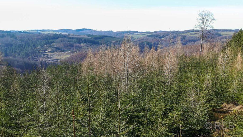Ausblick von der Nieringser Höhe Richtung Sauerland