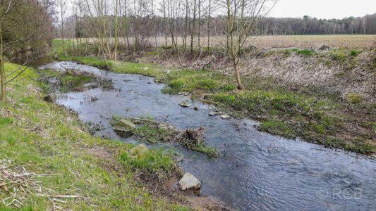 Fluss Issel