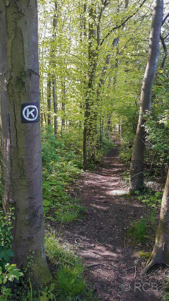 schmaler Pfad im Wald mit Wegmarkierung