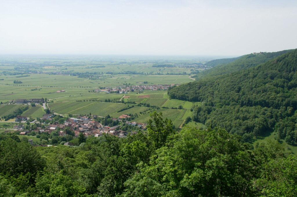 Blick vom Orensfels auf die Weinstraße