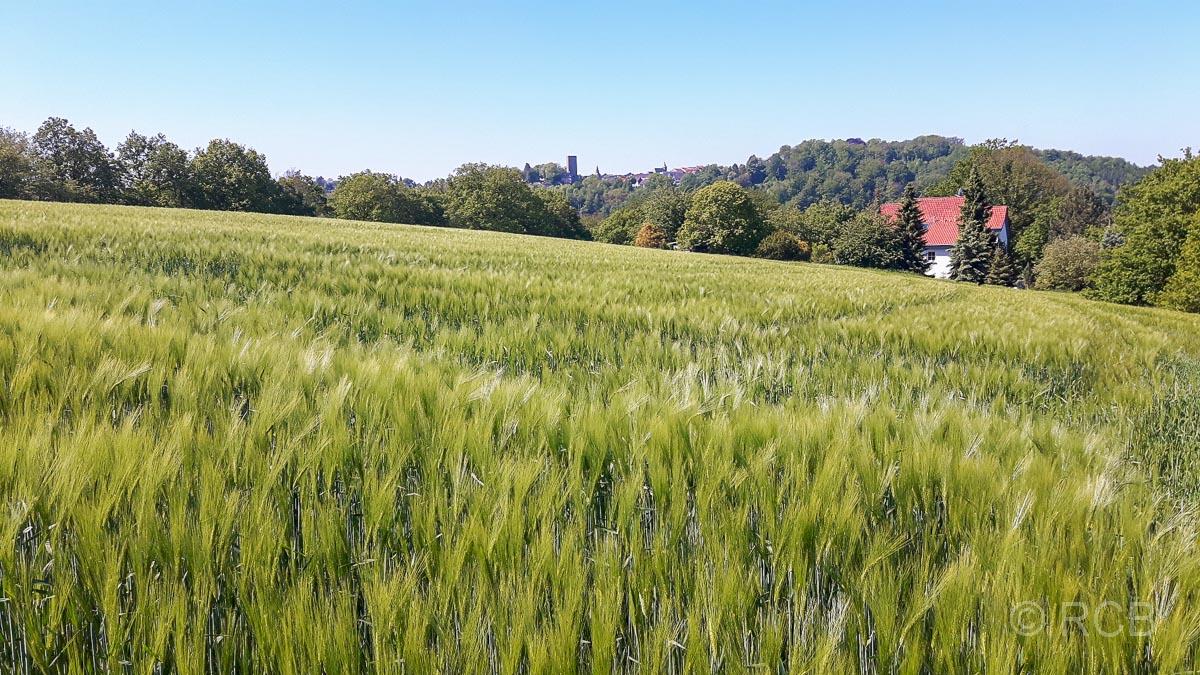 Blick von Stiepel zur Burg Blankenstein