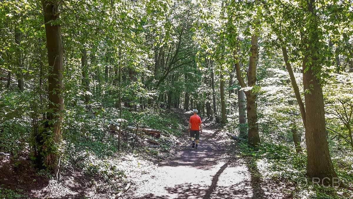 Mann wandert durch Wald