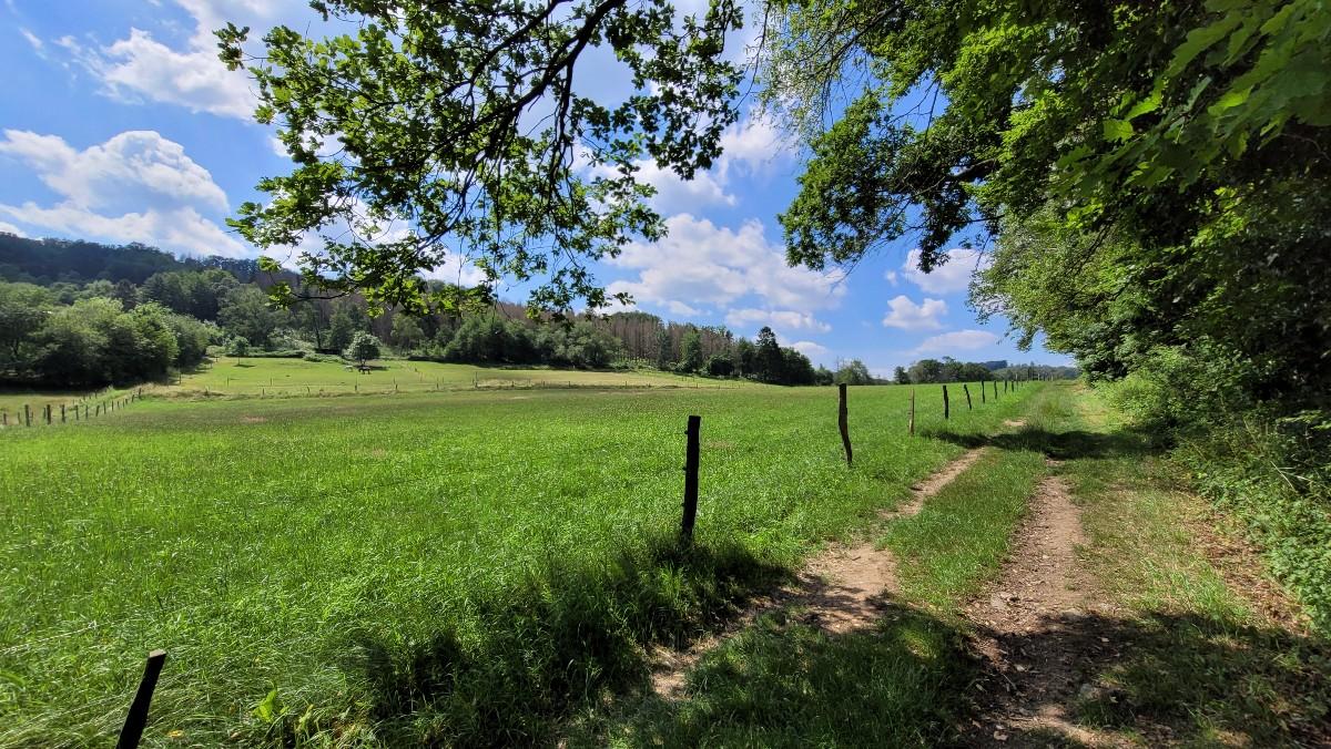 Stille Wälder bei Hohenlimburg
