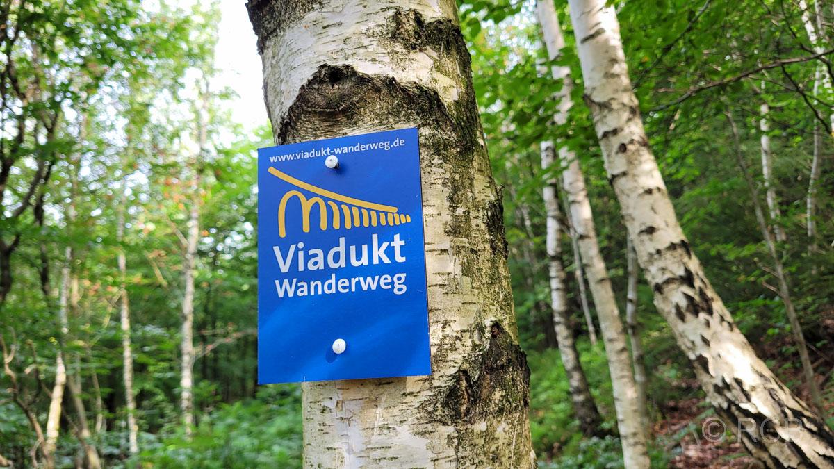Wegzeichen im Birkenwald