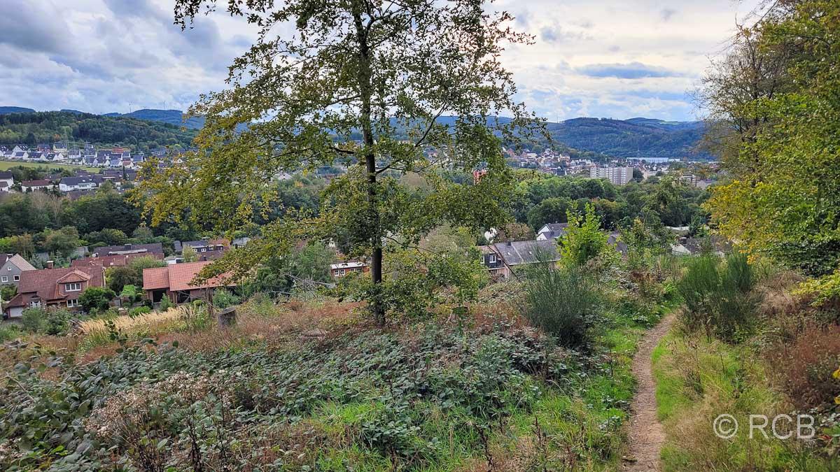 Blick auf Hagen-Elsey