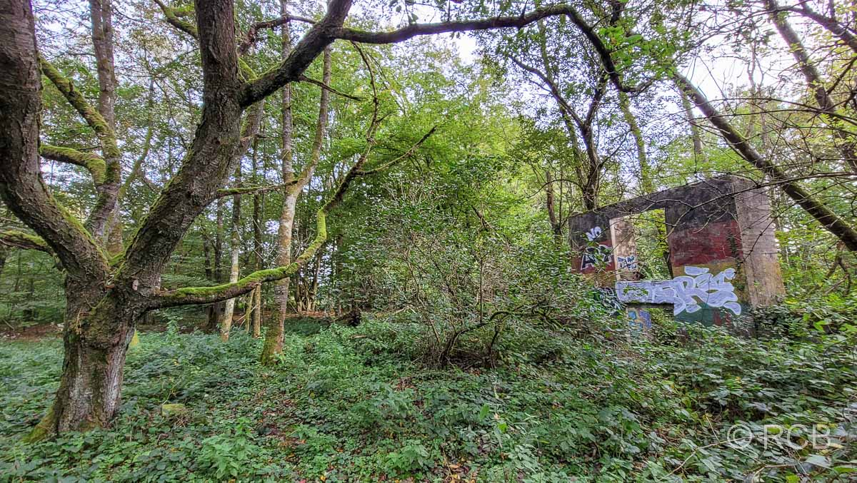 Lost Place im Wald